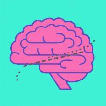 El Cerebro y Yo